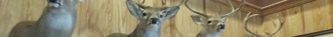 cropped-deer-heads-1.jpg